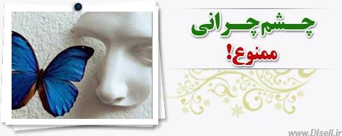 http://www.dlsell.ir/images/dlsell/pics/amoozesh/mamnoe.jpg