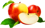 سیب - خرید پستی مجموعه بی نظیر بیش از 8000 فایل لایه باز با موضوعات مختلف - پایگاه اینترنتی دی ال سل